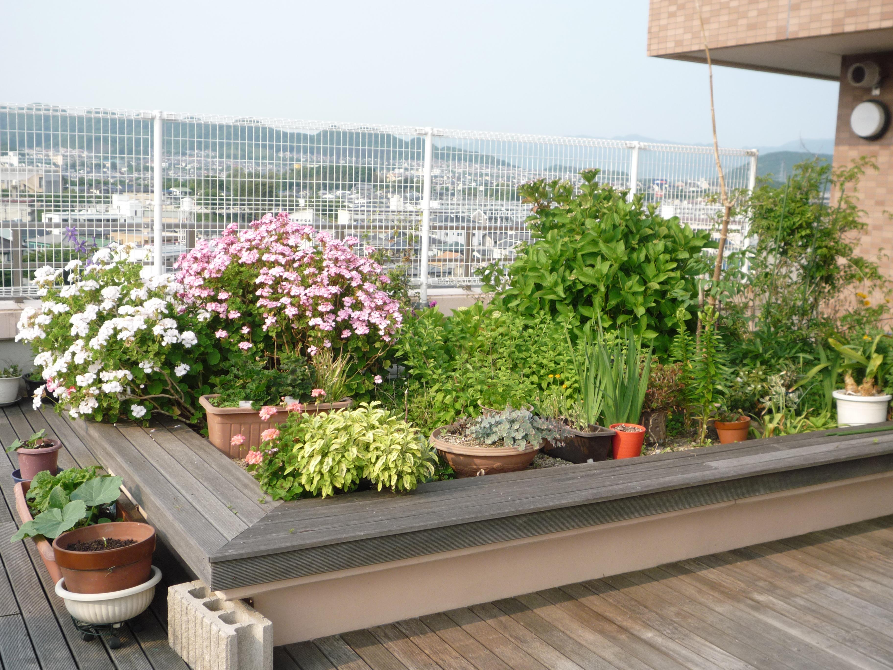 http://www.chidoribashi-resident.jp/blog/P1160648.JPG